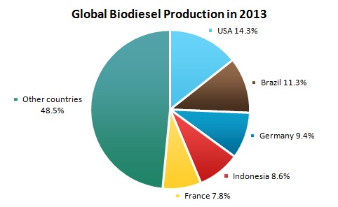 Global Biodiesel Production in 2013